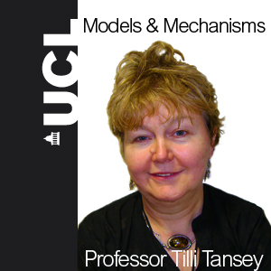 Models and Mechanisms: Aspects of Biomedicine at UCL in the Twentieth Century - Audio